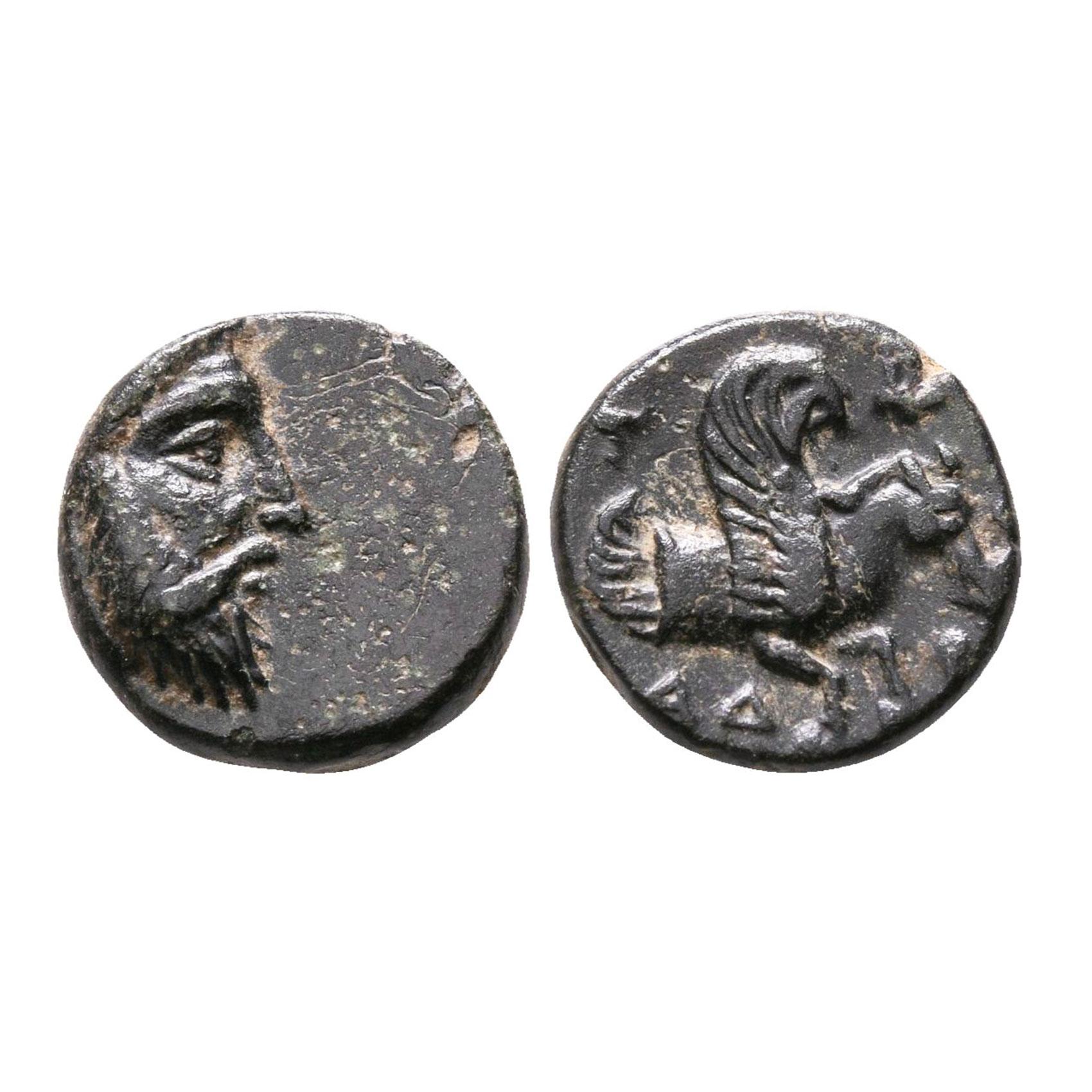 Moneta Della Misia