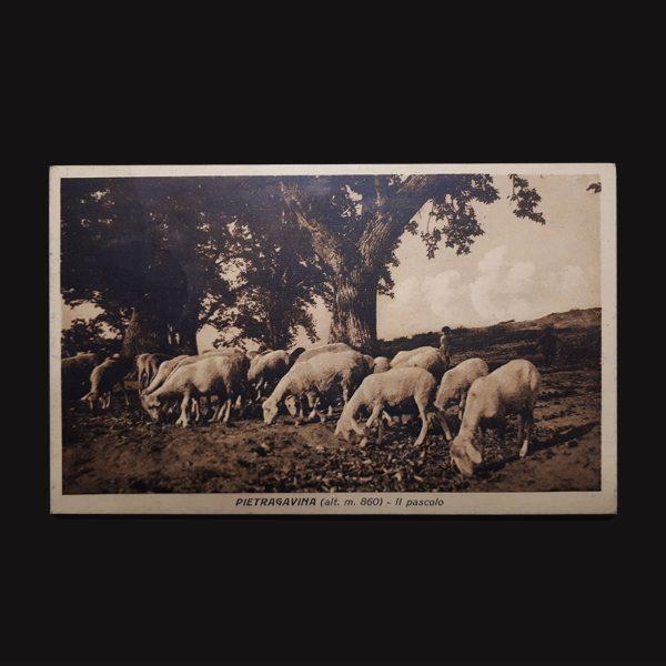 Cartolina Di Pietragavina