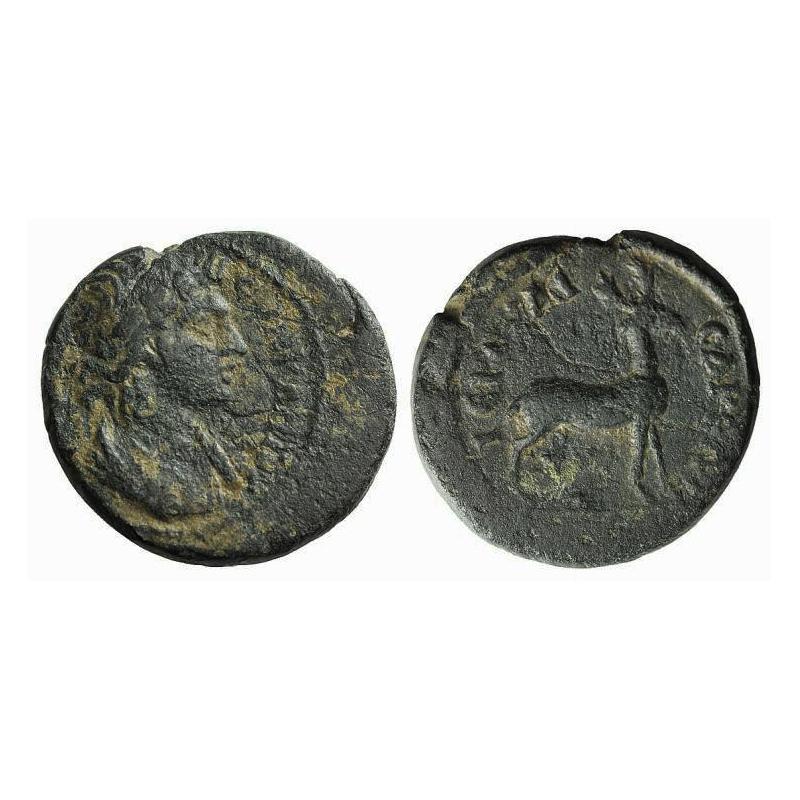 Moneta Della Ierocesarea