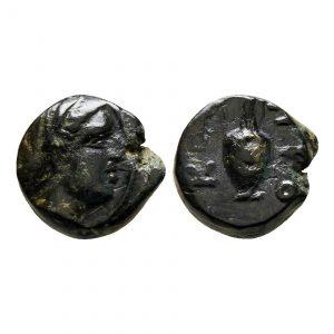 Moneta Con Anfora Greca