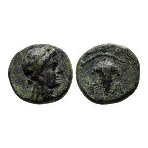 Moneta Con Uva