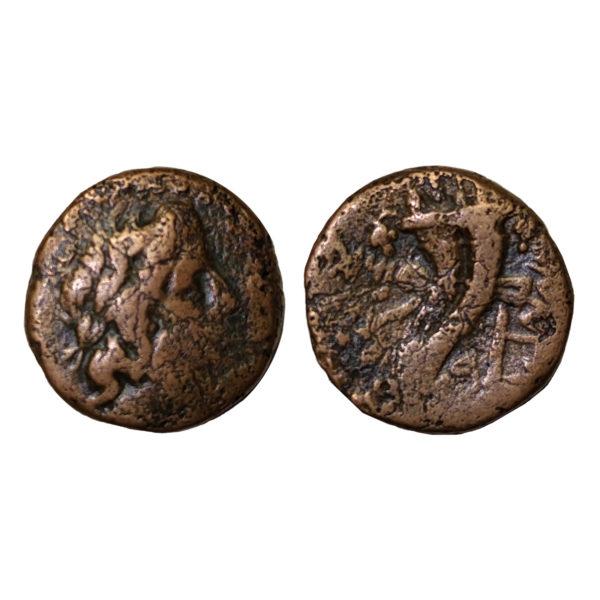 Moneta Di Tolomeo