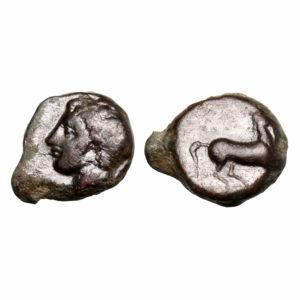 Testa di Tanit   Moneta cartaginese   Filatelia Numismatica Lottini