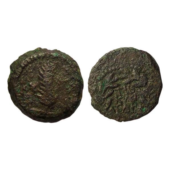 Moneta Del Periodo Di Gesù