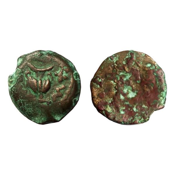 Moneta Della Guerra Ebraica