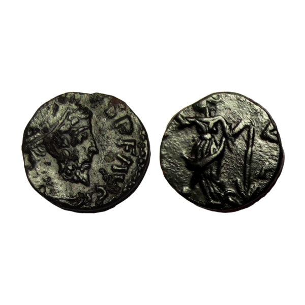 Moneta Di Tetrico
